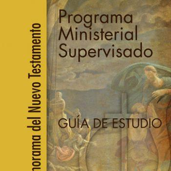 Programa Ministerial Supervisado, Nuevo Testamento