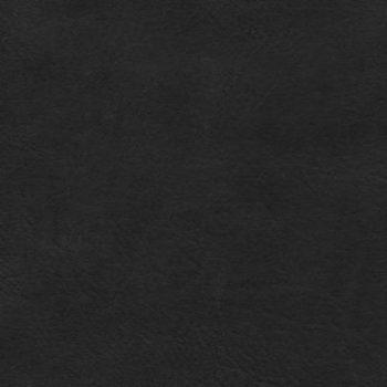 Biblia Del Pescador – Negro Piel Genuina