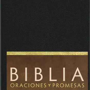 Biblia Oracion y Promesas Imitacion Piel