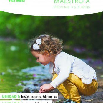 PRIMEROS PASOS MAESTRO Y VISUALES